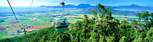 The World Famous Skyrail Cableway Tour
